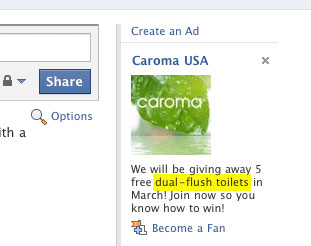 Facebook Dual-Flush Toilet
