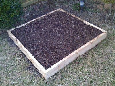 Square Foot Garden with Soil